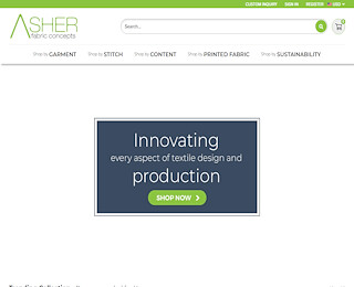 asherconcepts.com