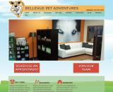 Dog Grooming Bellevue