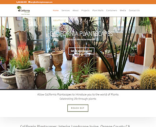 Potted Plants Orange County
