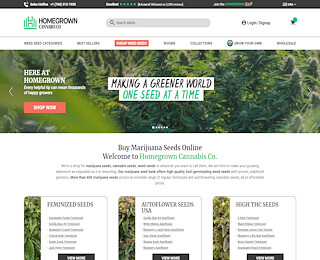 Best Online Seed Bank