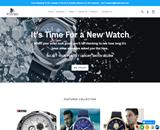 ibwatches.com