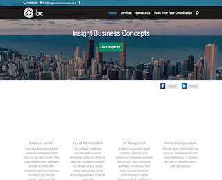 insightbusinessconcepts.com