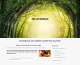 Website Design Small Business