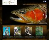 troutscout.co.nz