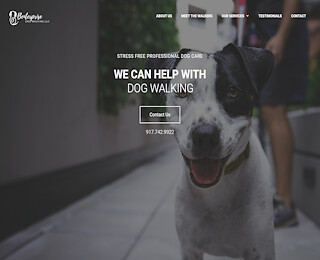 Dog Walking Services Nyc