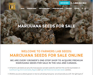 Cannabis Seeds For Sale Usa