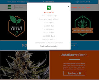 Wholesale Cannabis Seeds For Sale Online