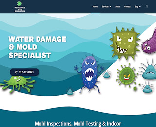Mold And Mildew Removal Companies