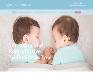 Miami Surrogacy Lawyer