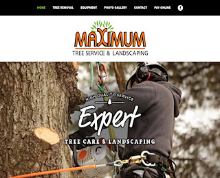 Tree Service Minnesota