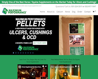 Performance Horse Supplements  Performance Horse Supplements pageimage