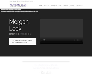 morganleakdetection.com