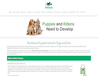 nuvetonline.com