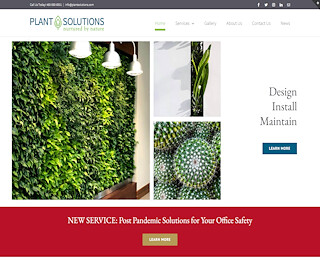 Living Green Walls Scottsdale