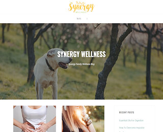Synergy Family Wellness