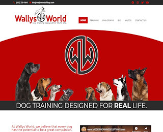 Dog Trainer Long Island