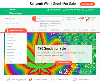Marijuana Seeds Georgia